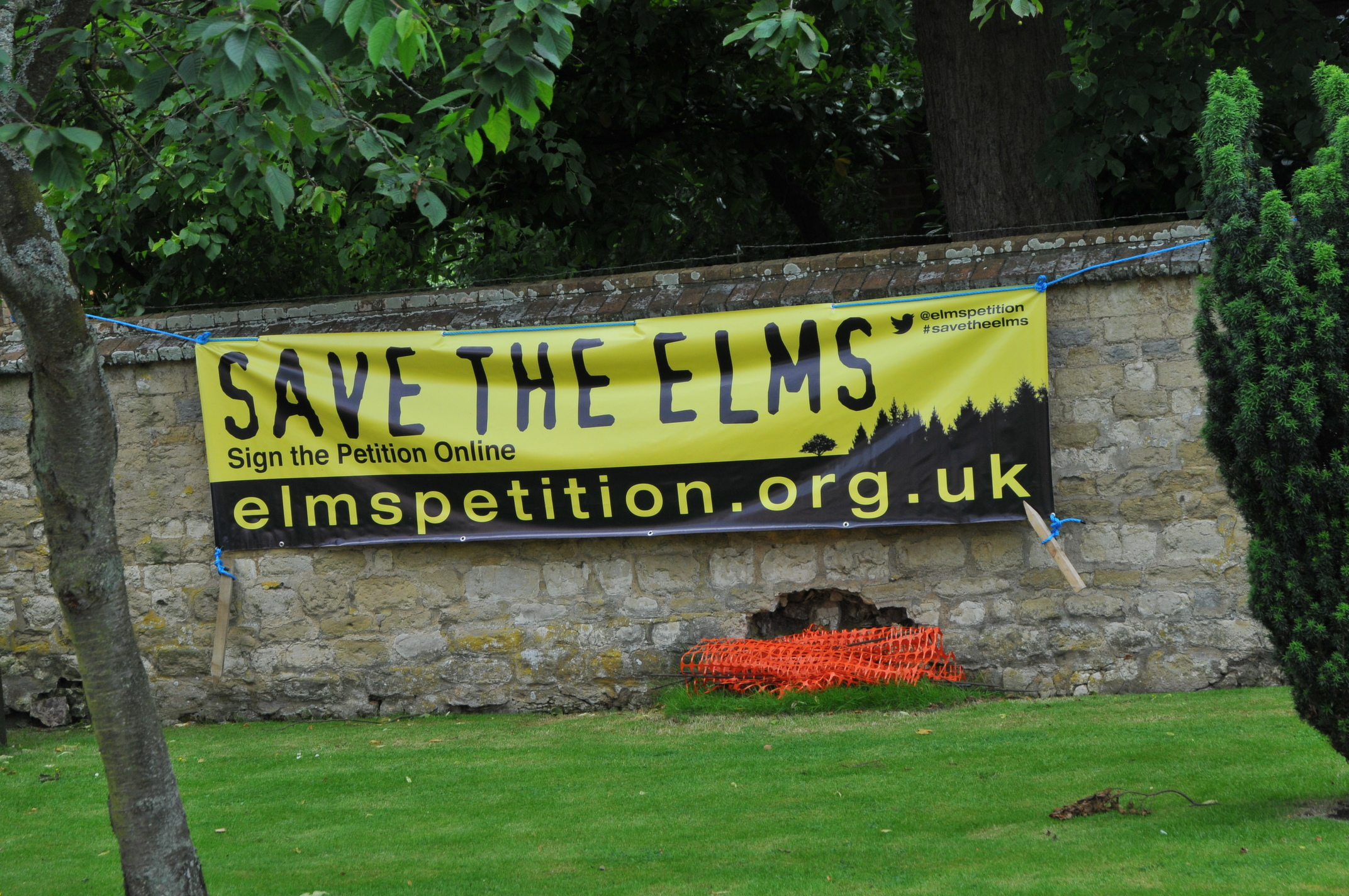 Save The Elms Banner